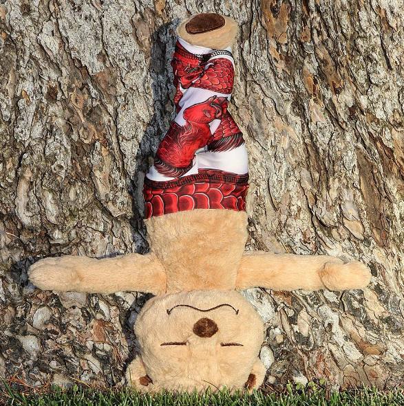 Meddy Teddy posing.