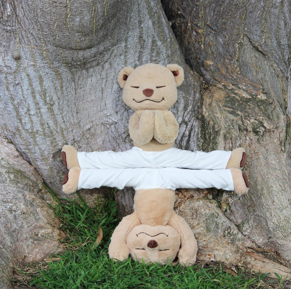 What's better than one yoga-doing bear?