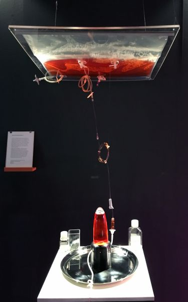 Stir Fly, part of the Field Test Exhibition at the Science Gallery, Dublin