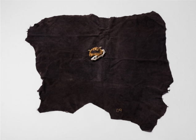 The Loves Ones by Sam Anderson includes Leather, dried sunflower, laminate, wire and frog skeleton