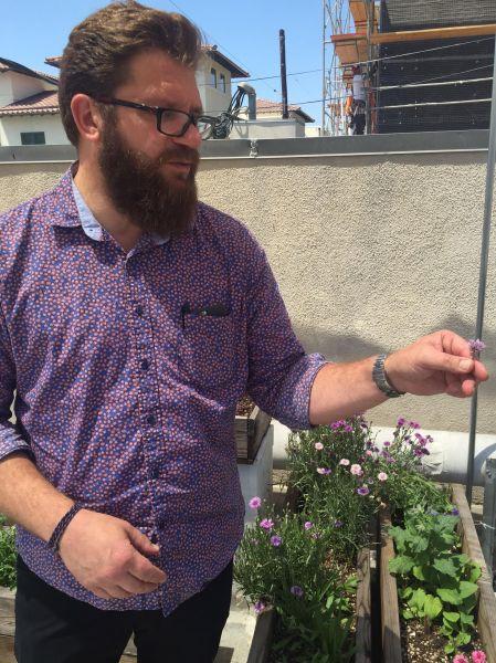 Michael Cimarusti examines edible flowers in Providence's herb garden.