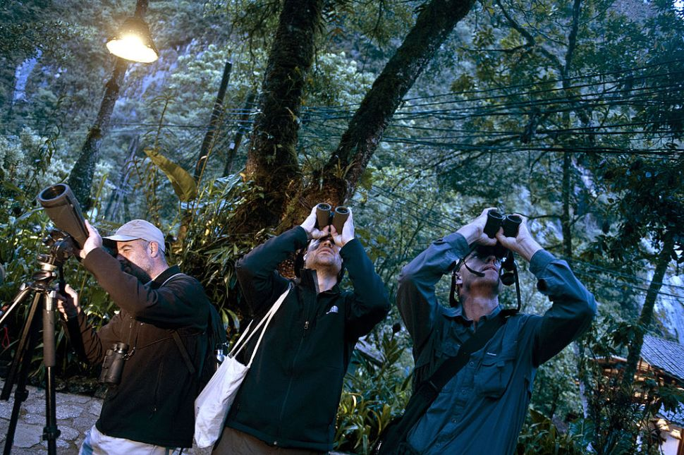 """Birdwatchers spot birds during the Birding Rally Challenge at """"Aguas Calientes"""" near the Machu Picchu sanctuary in Cuzco on December 05, 2012. The Birding Rally Challenge is a competition, involving teams of well known birders, where participants must cover the greatest number of habitats within a relative small geographical area and in a limited amount of time, allowing them to appreciate the biodiversity of Peru.  AFP PHOTO/ERNESTO BENAVIDES        (Photo credit should read ERNESTO BENAVIDES/AFP/Getty Images)"""