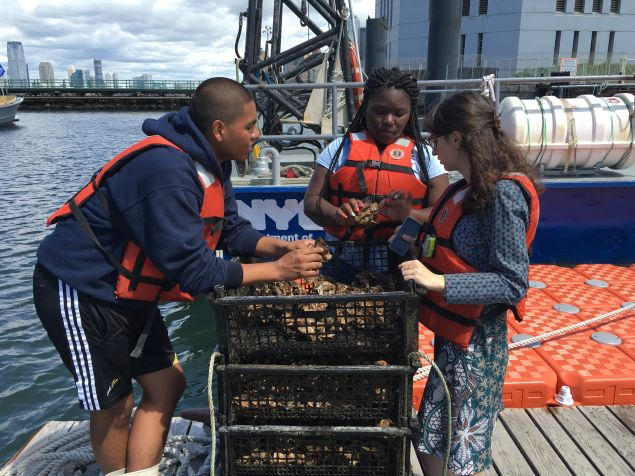 Aquaculture interns Anaya and Chris explaining the grow out process (Photo: Courtesy Billion Oyster Project)