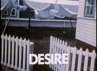 "A film stlll from Ken Kobland's ""Landscape and Desire."""