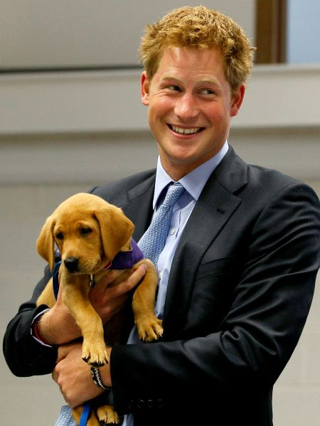 Prince Harry is notoriously an animal lover.