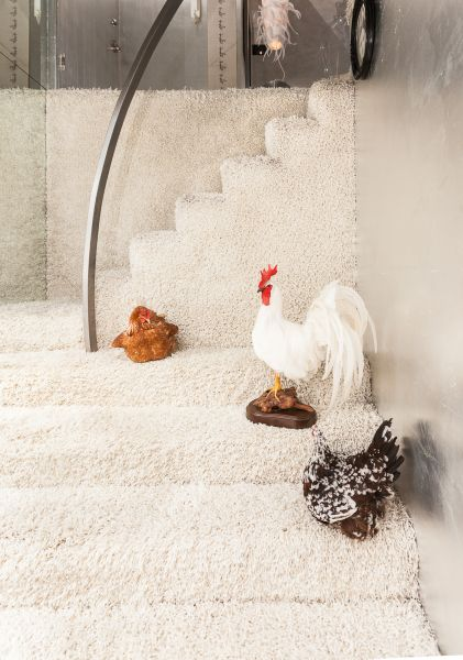 Roosters line the stairs of the duplex