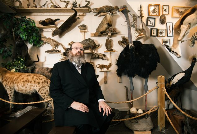 Torah Animal World - In the biblical animals room.