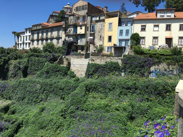 A stunning view of Porto, from a bike tour