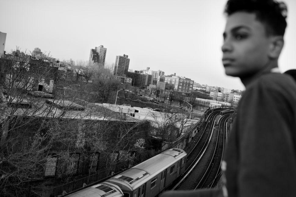 Chavier overlooks the South Bronx.