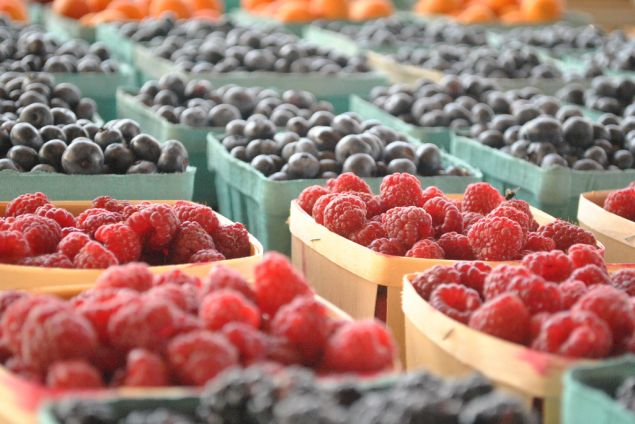 Berries are part of a anti-cancer diet.