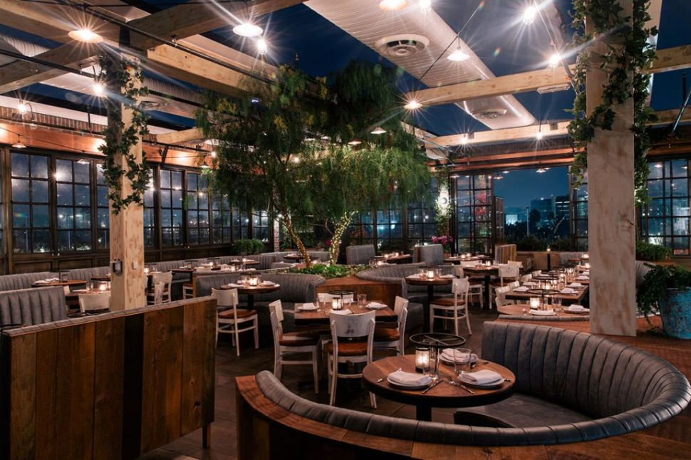 Live the lush life on Catch LA's rooftop.