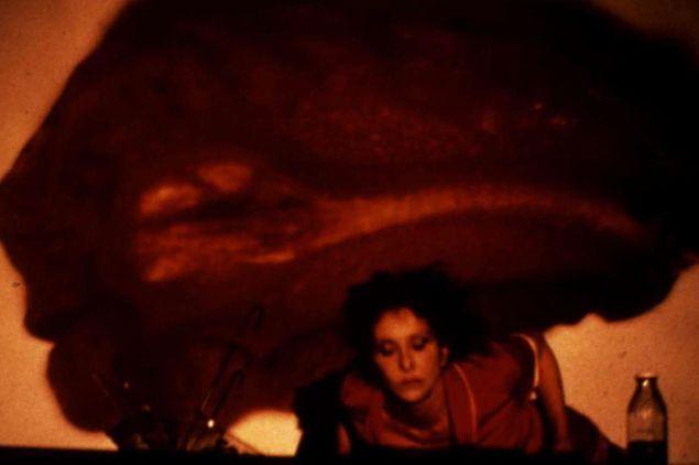Carolee Schneeman's Fresh Blood.