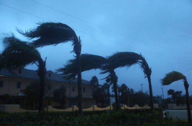 Palm trees sway from the winds of Hurricane Matthew in Cocoa Beach, Florida.