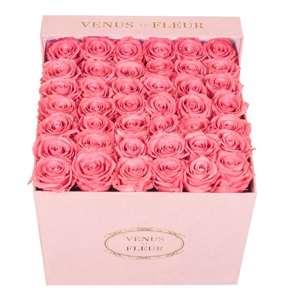 A sueded box of roses from Venus et Fleur.