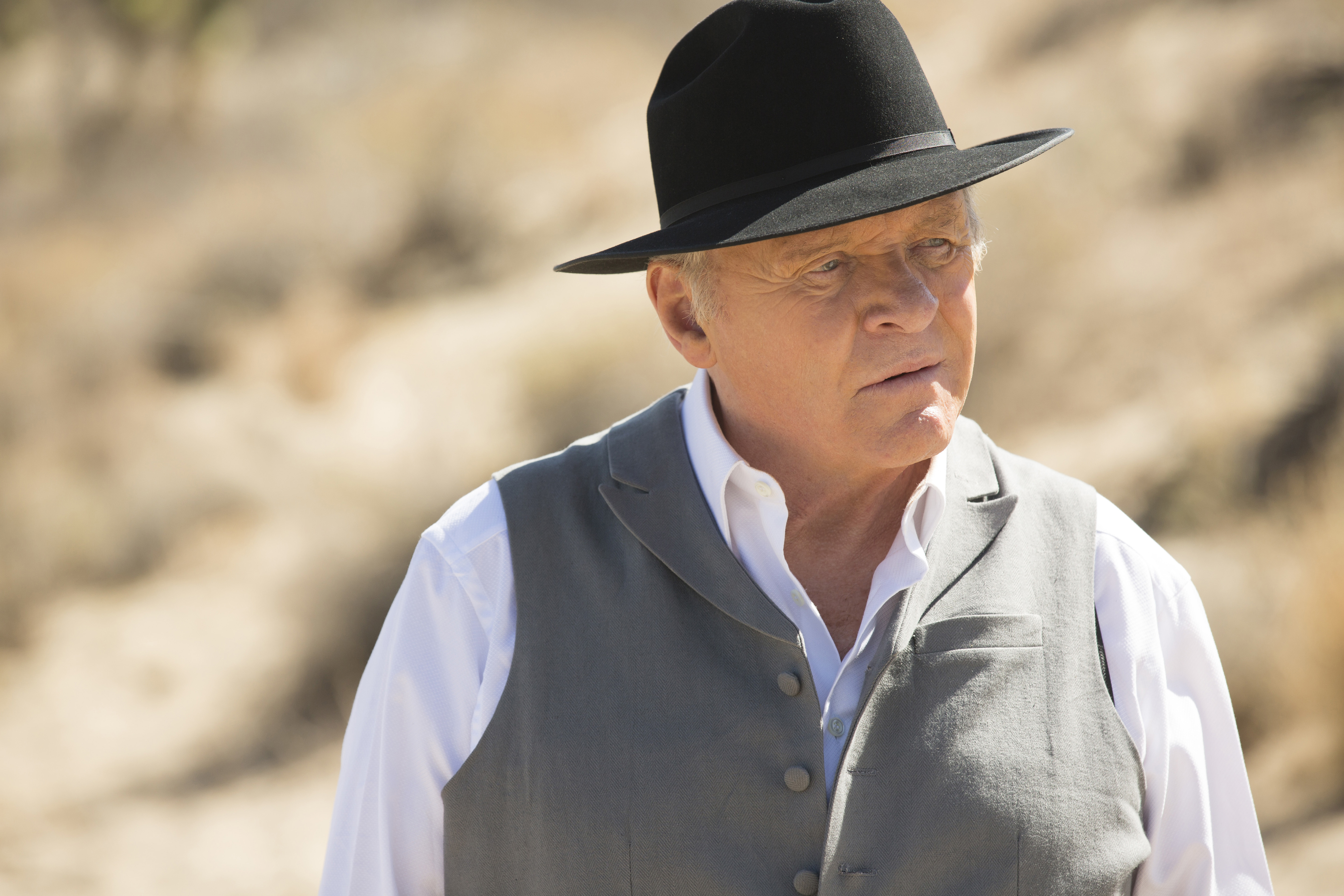 Anthony Hopkins as Doctor Robert Ford.