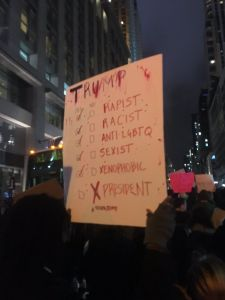 Protester carries checklist indicating that Donald Trump isn't president.