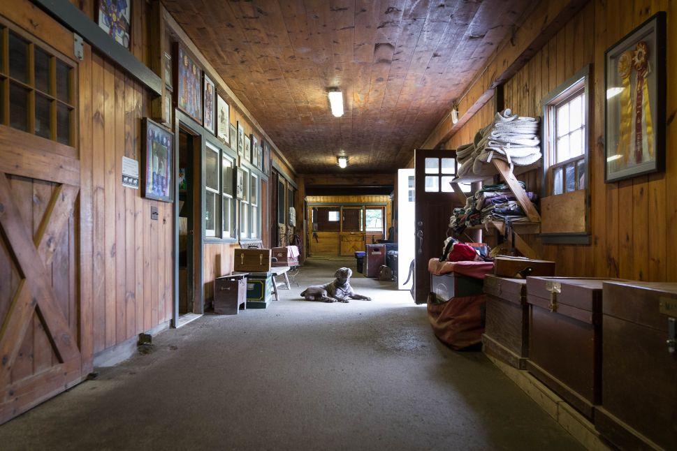Fox Run Farm. Millbrook, NY.