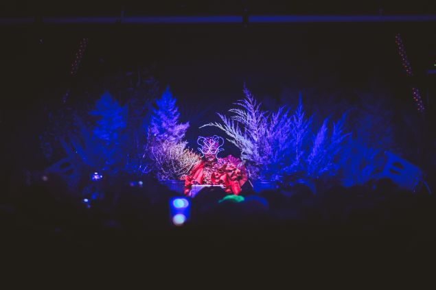 Björk also played two DJ sets, largely obscured by plants