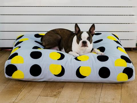 Dusen Dusen's graphic printed dog beds are a great home accent.