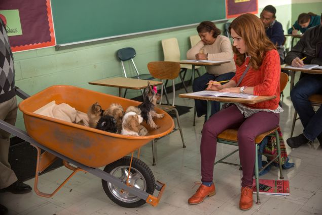 Ellie Kemper as Kimmy Schmidt and a wheelbarrow of puppies as a wheelbarrow of puppies.