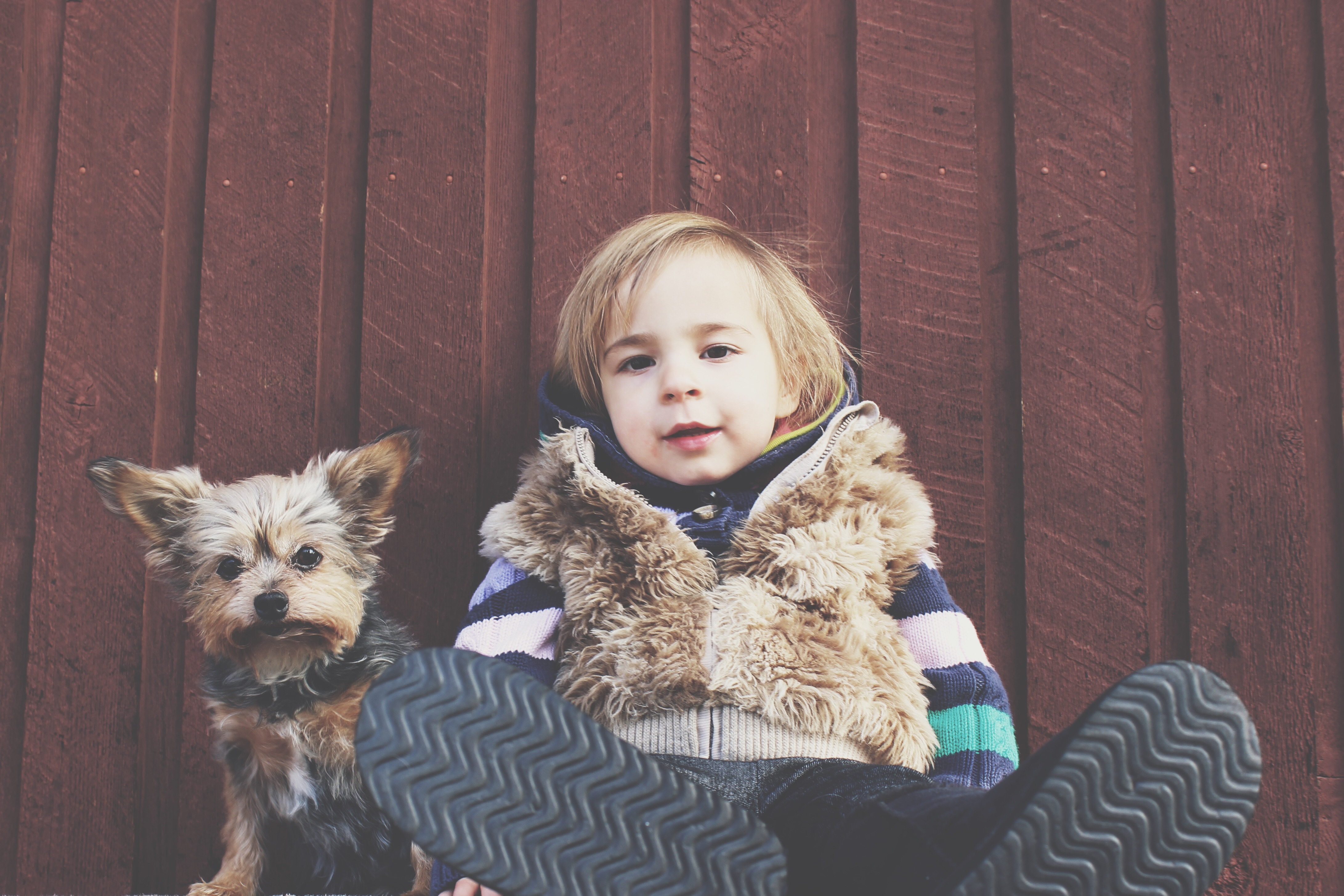 Dogs with cancer are helping kids.