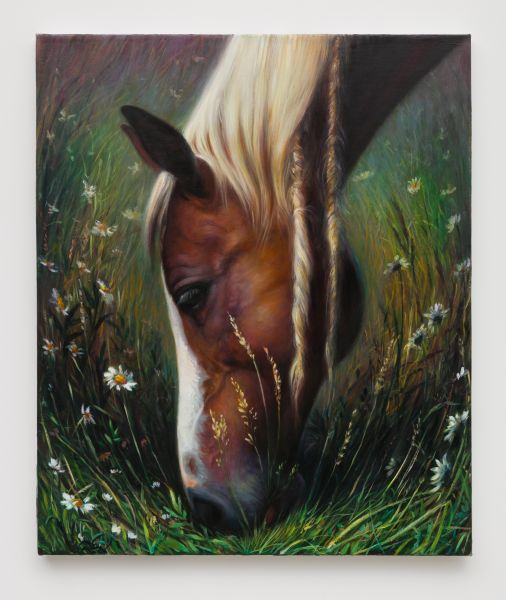 TM Davy, horse (xxx), 2016.