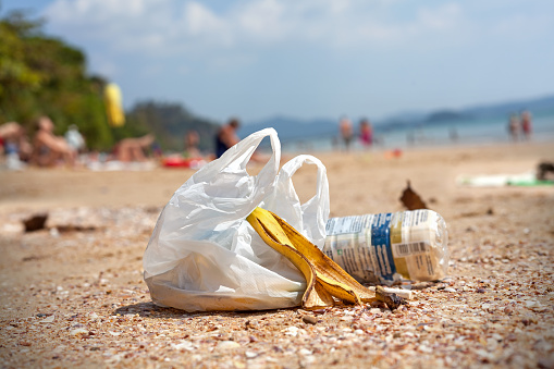 New York may be inching closer to implementing a statewide plastic bag ban.