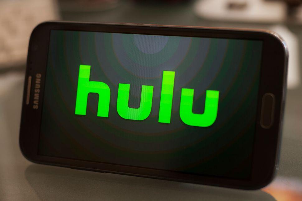 Hulu Animation Netflix Amazon
