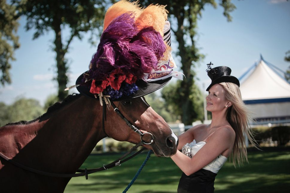 "ASCOT, ENGLAND - JUNE 14: In this handout image provided by Cow PR, Ambers, a racehorse owned by Fox's Biscuits, is pictured wearing the world's first ever Ladies' Day hat for a horse alongside racegoer Elizabeth Beswick on June 14, 2011 in Ascot, England. Milliner, Stephen Jones has today created the first-ever hat for a horse to celebrate the 300th anniversary of Royal Ascot and its Ladies' Day tradition of extravagant headwear. The unique piece of horse couture has been commissioned by Fox's Biscuits to be elegantly worn by the biscuit manufacturer's own fine filly, Ambers - a racehorse named after the new biscuit range, Fox's Ambers. The hat represents Stephen Jones's first foray into filly fashion; whose designs are typically tailored for a who's who of the world's most famous Stars, including royalty. The revered fashion designer is also the official milliner for Royal Ascot in its tercentenary year. The horse's hat draws its inspiration from the timeless Ladies' Day headpiece made famous by Audrey Hepburn in the film My Fair Lady. With floral flourishes and lavender and amber feathers adding flashes of colour alongside luxurious satin, it is the epitome of equine elegance. From concept to construction, the hat took more than 30 hours of masterful millinery to complete and is valued at over £8,000. Commenting on the design, Stephen Jones said: ""For three centuries Royal Ascot has been home to some of the world's finest horses and finest hats. But until now, nobody had ever created hats for the other important ladies of the day: the female racehorses. When I was approached to create a hat for a horse, it brought a smile to my face and seemed like a fun and unique way to celebrate 300 years of the world's most famous racing event."