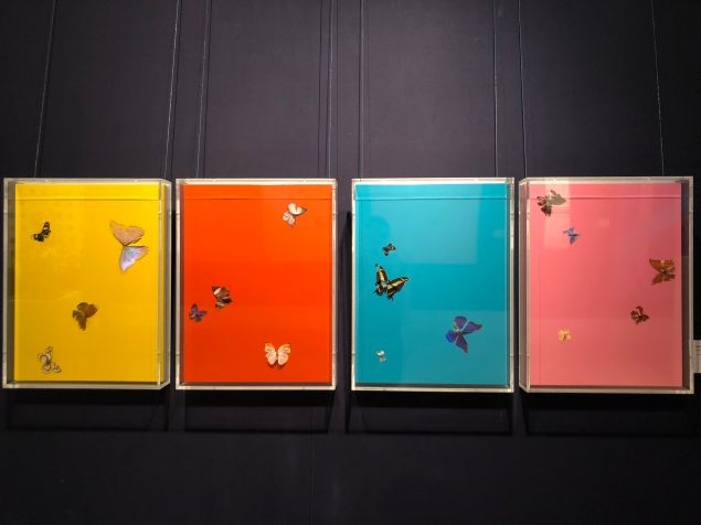 A multi-panel work depicting butterflies on colorful backgrounds by artist Damien Hirst.