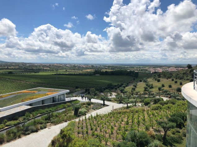 An aerial view of the art space Quinta do Quetzal with its vineyards in the background.