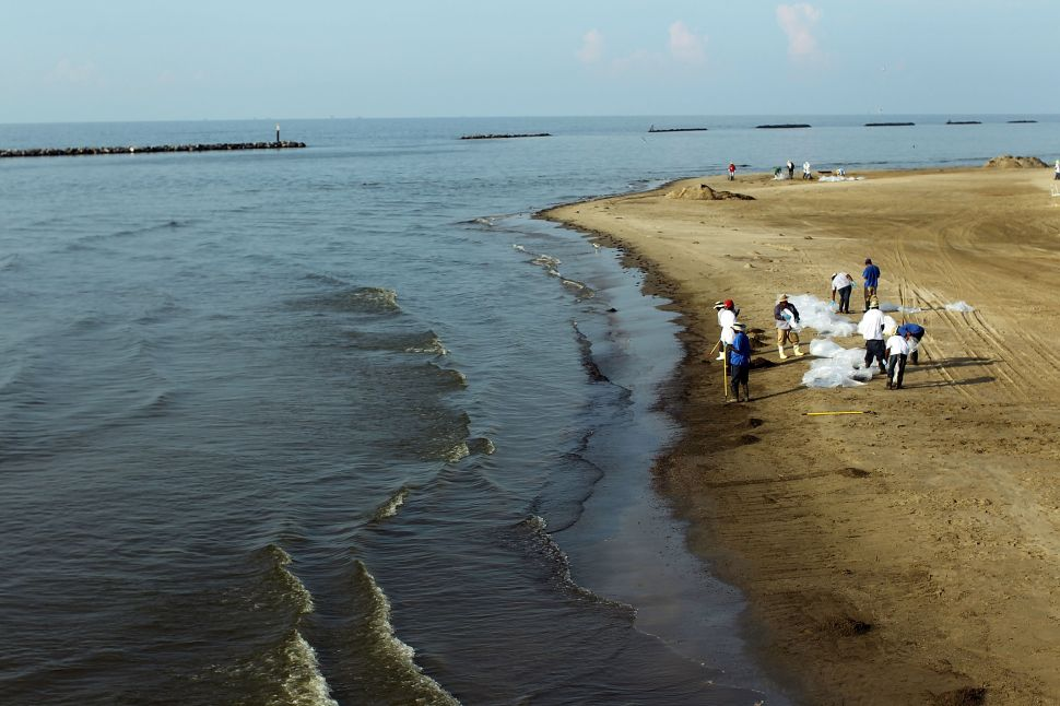 Oil clean-up contractors work on a contaminated beach June 16, 2010 in Grand Isle, Louisiana.