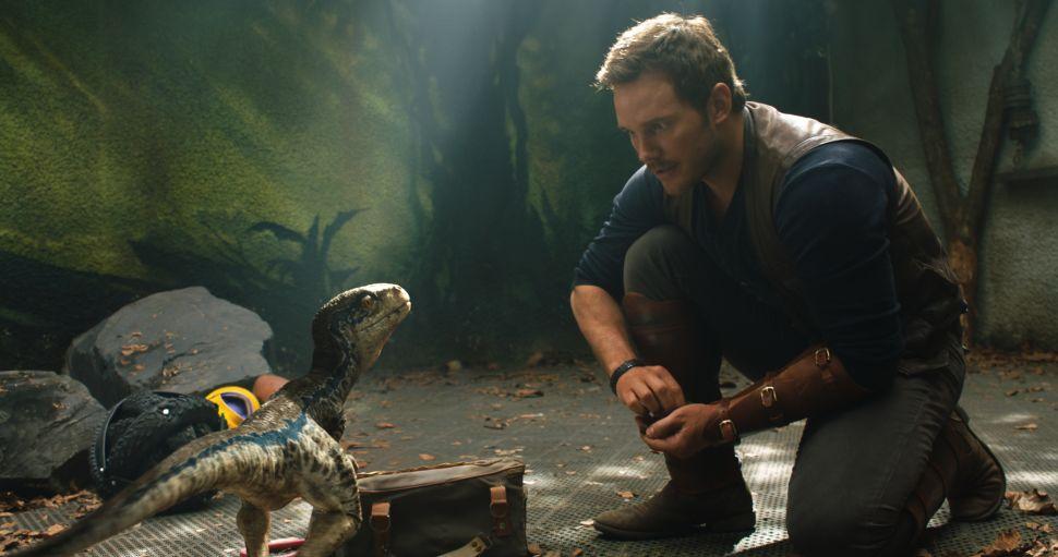"""Owen (Chris Pratt) with a baby Velociraptor in """"Jurassic World: Fallen Kingdom."""""""