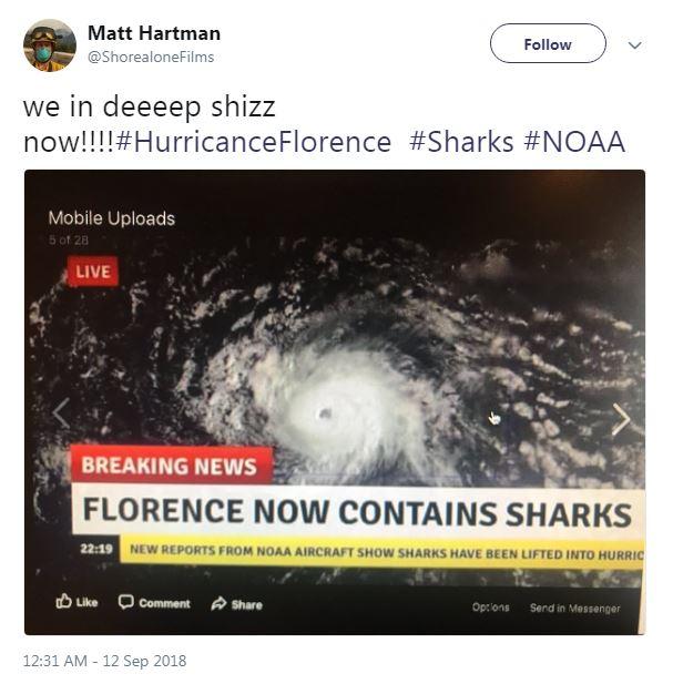 Hurricane Florence is not a 'sharknado.'