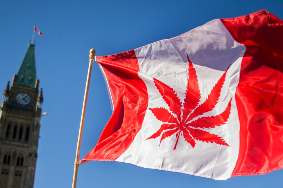 On Wednesday, Canada became the second country after Uruguay to legalize recreational marijuana.