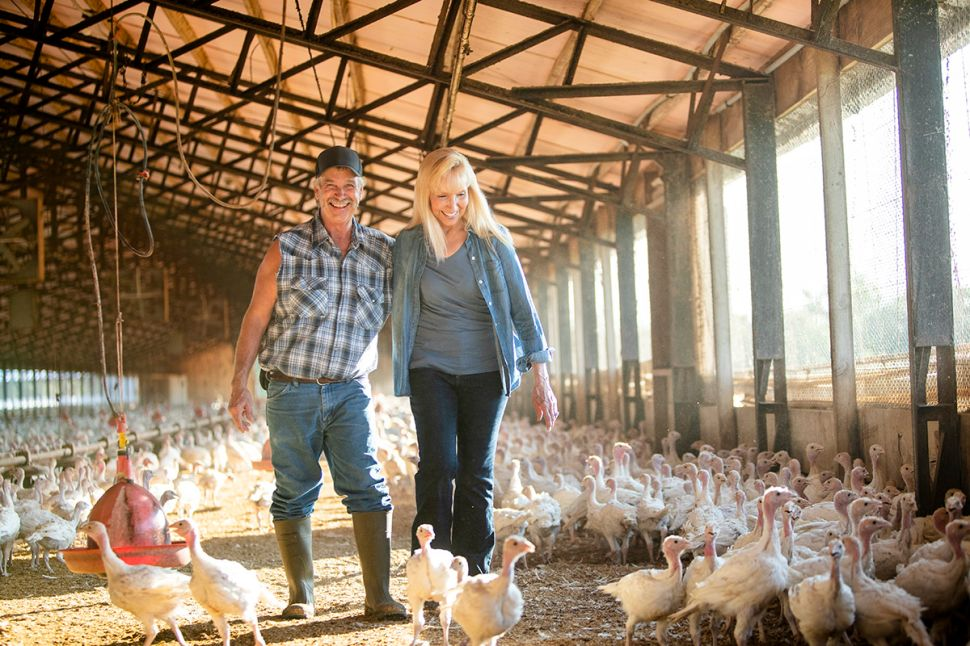 The Albertson's farm has been supplying over 60,000 turkeys a year to Cargill since 1995.
