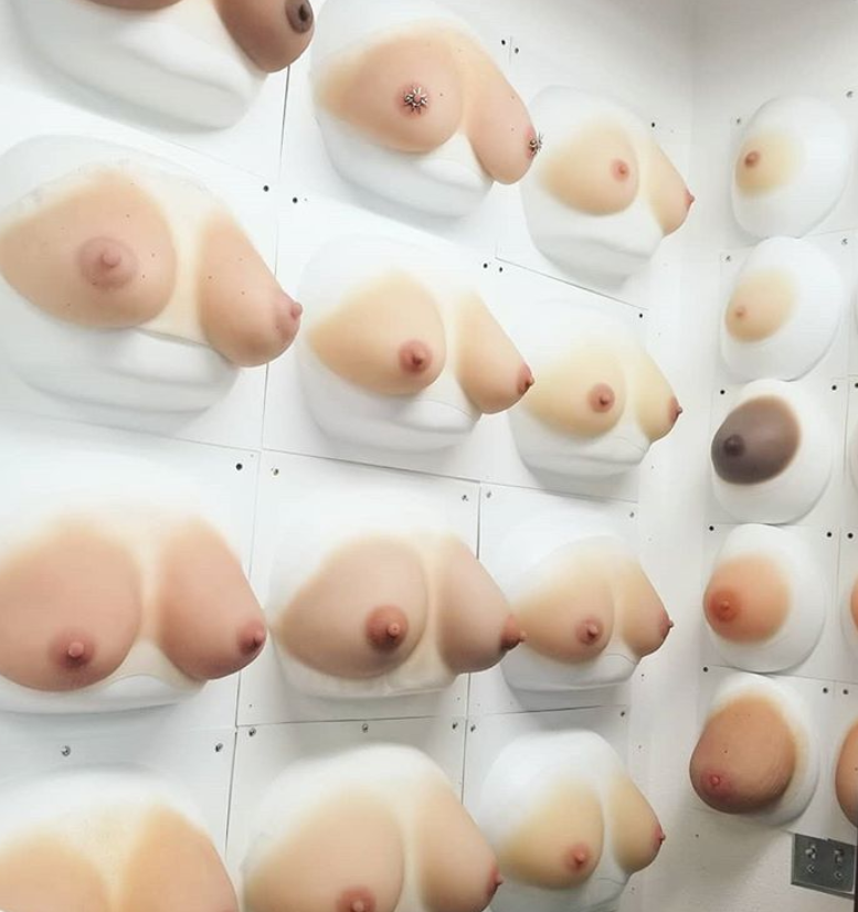 A wall of synthetic breast options A wall of synthetic body parts awaiting their robot bodies, at Abyss Creations in San Marcos, CA.
