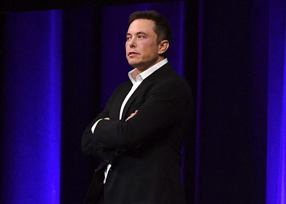 Elon Musk owns 19 percent of Tesla.