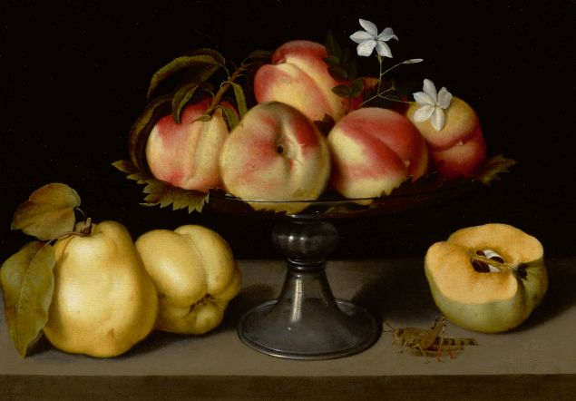Fede Galizia, A Glass Compote With Peaches, Jasmine Flowers, Quinces, And A Grasshopper. Oil on panel.
