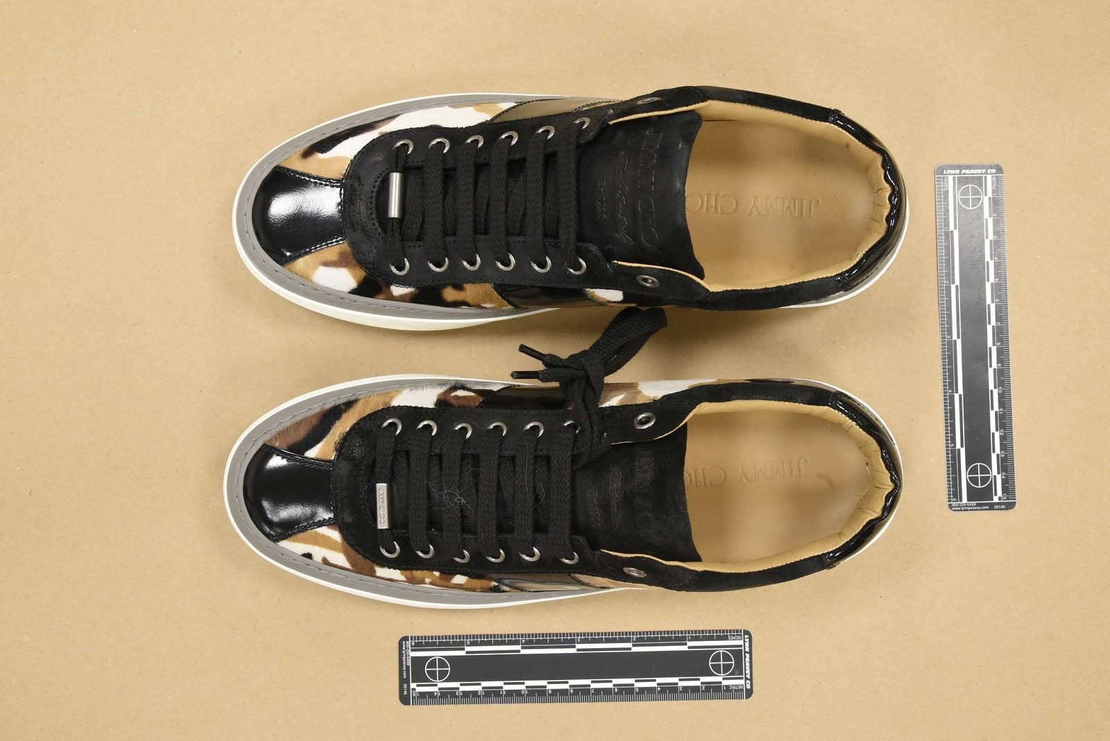 Stolen celebrity shoes