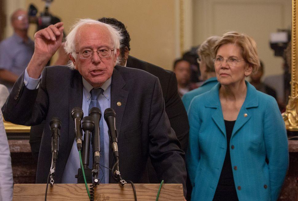 2020 Democratic candidates Bernie Sanders and Elizabeth Warren.