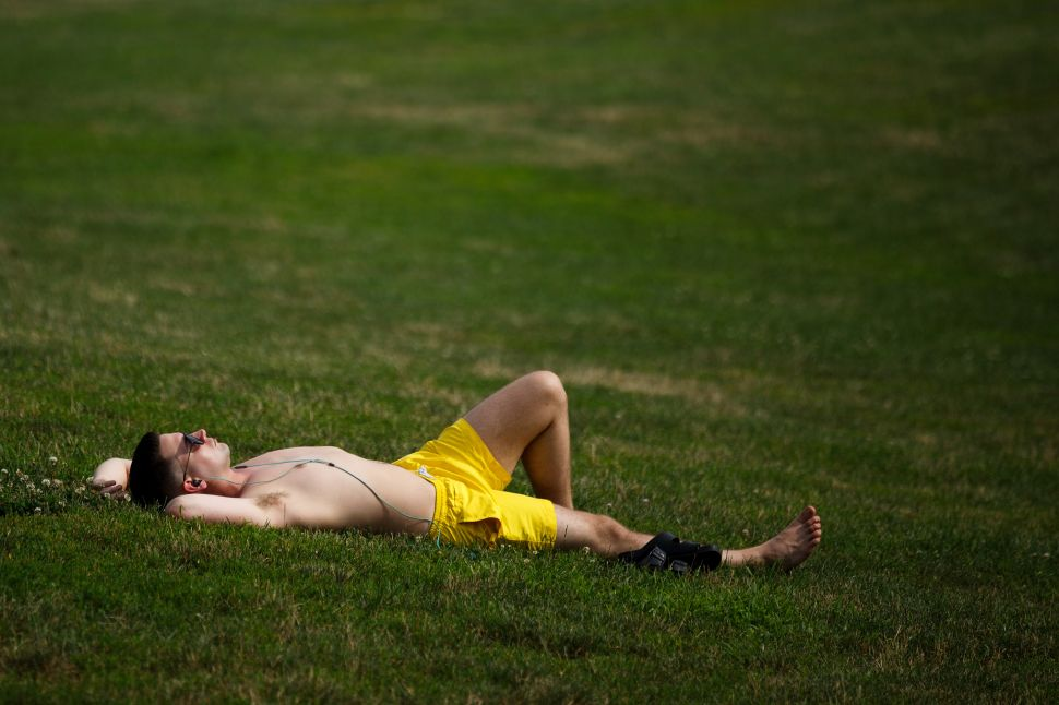 A sunbather in Prospect Park.