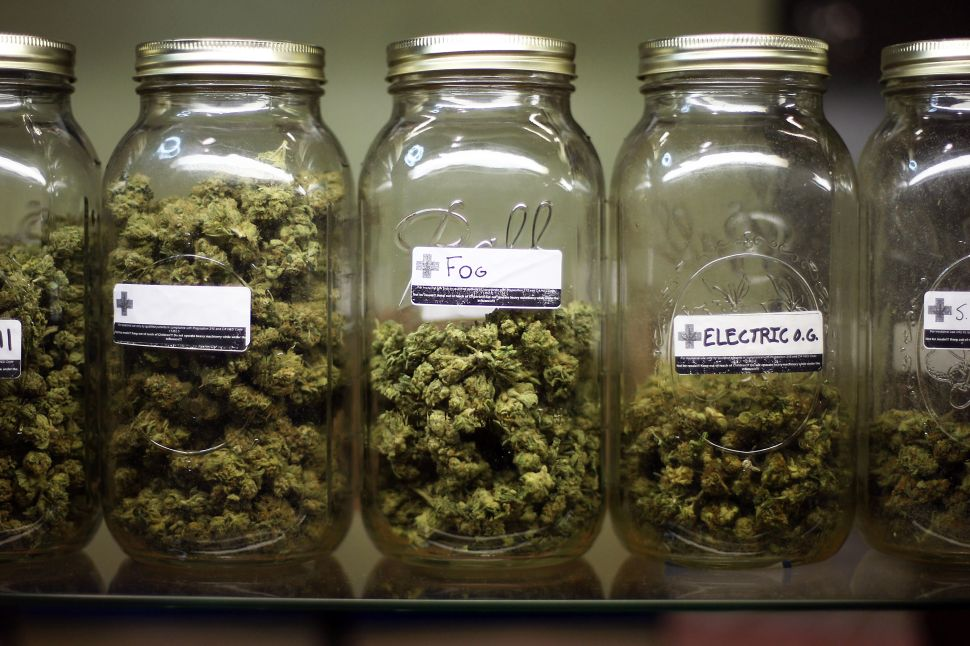 Various types of marijuana are on display at Private Organic Therapy (P.O.T.), a non-profit co-operative medical marijuana dispensary, on October 19, 2009 in Los Angeles, California.