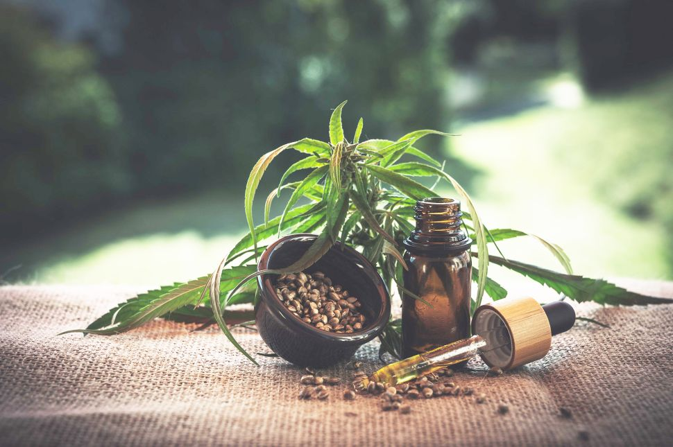 CBD Oil Guide 2020