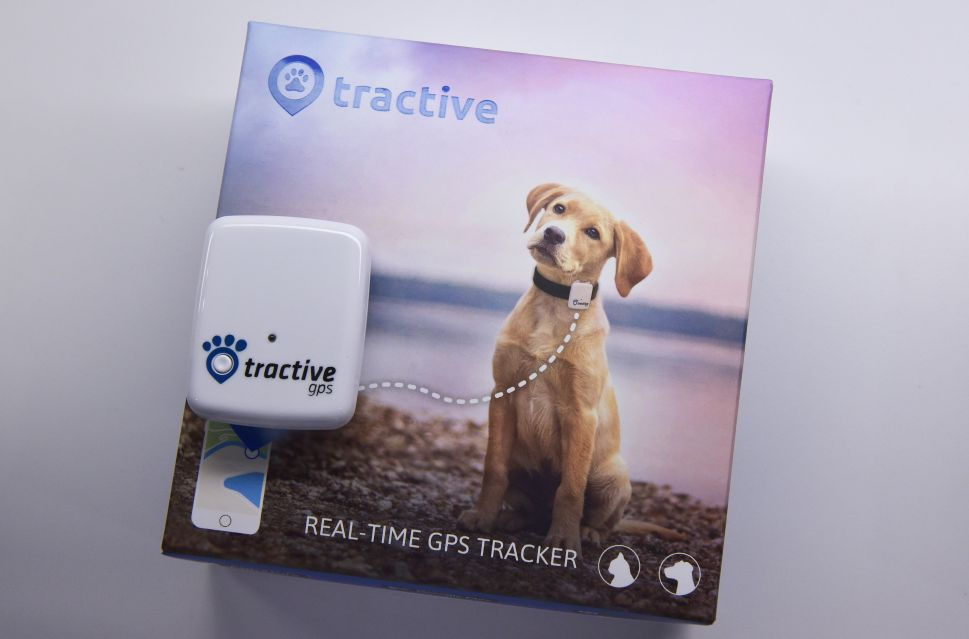 A Tractive GPS pet tracker.