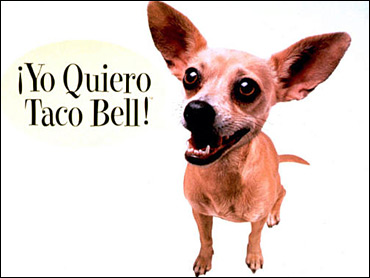 tacobell dog American Realty Capital Hungry for Fast Food
