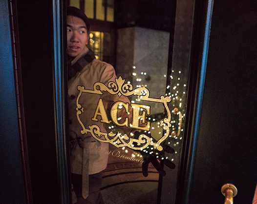 Ace Hotel New York at 20 West 29th Street