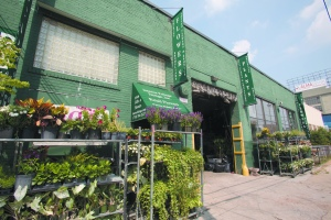 The exterior of Interior Foliage Design in Long Island City, Queens. - Photo by Aaron Adler
