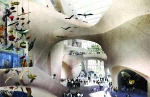 The design of the American Museum of Natural History's Gilder Center Central Exhibition Hall (Rendering: Studio Gang).
