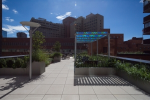 The outdoor terrace at 340 East 24th Street.